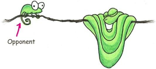 kb-python.jpg
